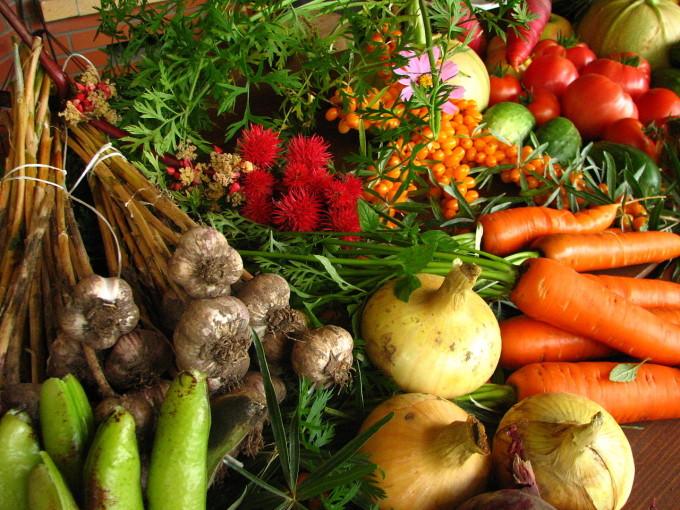 Sezónní potravina
